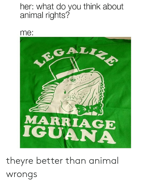 Marriage, Animal, and Animal Rights: her: what do you think about  animal rights?  me:  GAL  MARRIAGE  IGUANA theyre better than animal wrongs