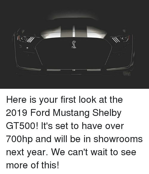 Memes, Ford, and Ford Mustang: Here is your first look at the 2019 Ford Mustang Shelby GT500! It's set to have over 700hp and will be in showrooms next year. We can't wait to see more of this!