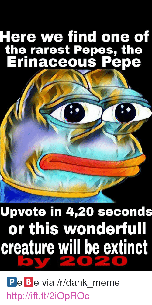 "Rarest Pepes: Here  we find one of  the rarest Pepes, th<e  Erinaceous Pepe  Upvote in 4,20 seconds  or this wonderfull  creature will be extinct  by  2020 <p>🅿e🅱e via /r/dank_meme <a href=""http://ift.tt/2iOpROc"">http://ift.tt/2iOpROc</a></p>"
