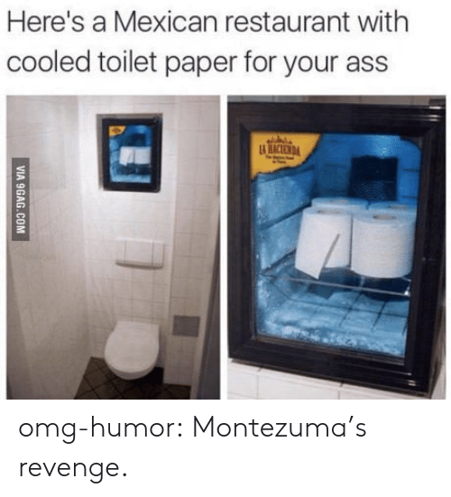 Ass, Omg, and Revenge: Here's a Mexican restaurant with  cooled toilet paper for your ass omg-humor:  Montezuma's revenge.