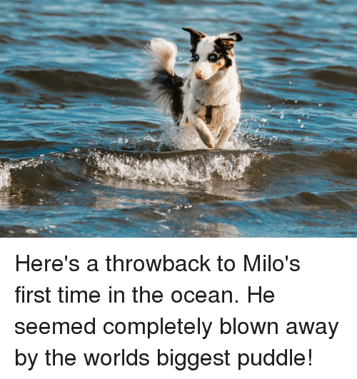 Ocean, Time, and First