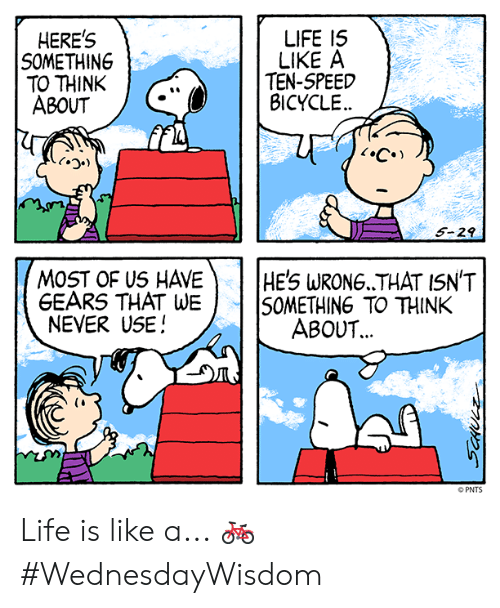 Life, Memes, and Bicycle: HERE'S  SOMETHING  TO THINK  ABOUT  LIFE I5  LIKE A  TEN-5PEED  BICYCLE  FIL  5-29  MOST OF US HAVEHE'S WRONG THAT ISN'T  GEARS THAT WE SOMETHING TO THINK  NEVER USE!  ABOUT.  (i  PNTS Life is like a... 🚲 #WednesdayWisdom