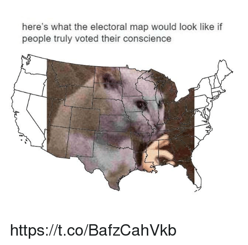 Conscience, Map, and What: here's what the electoral map would look like if  people truly voted their conscience https://t.co/BafzCahVkb