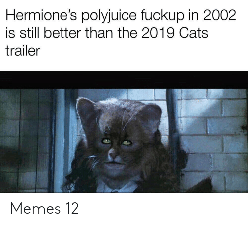 Cats, Memes, and Still: Hermione's polyjuice fuckup in 2002  is still better than the 2019 Cats  trailer Memes 12