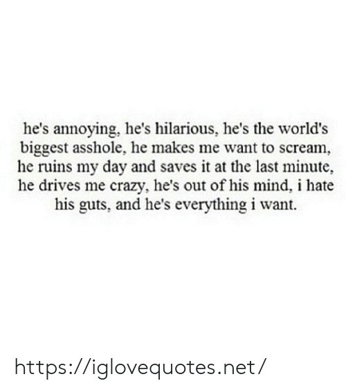 Crazy, Scream, and Hilarious: he's annoying, he's hilarious, he's the world's  biggest asshole, he makes me want to scream,  he ruins my day and saves it at the last minute,  he drives me crazy, he's out of his mind, i hate  his guts, and he's everything i want. https://iglovequotes.net/