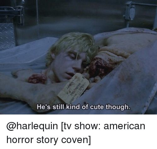 American Horror Story, Memes, and TV Shows: He's still kind of cute though. @harlequin [tv show: american horror story coven]