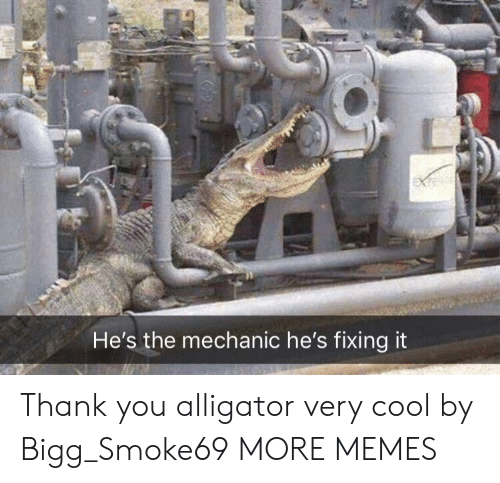 Dank, Memes, and Target: He's the mechanic he's fixing it Thank you alligator very cool by Bigg_Smoke69 MORE MEMES