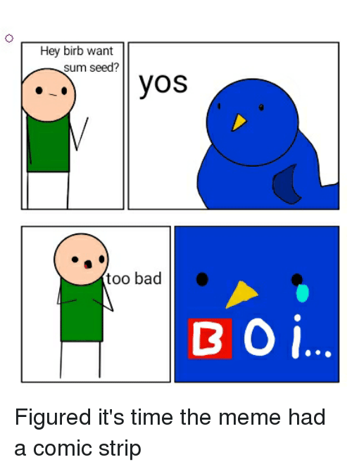 Bad, Meme, and Time: Hey birb want  sum seed?  too bad  BOİ