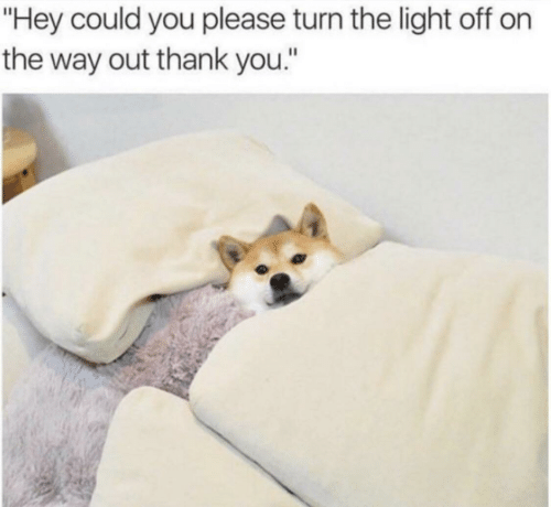 "Thank You, Light, and You: ""Hey could you please turn the light off on  the way out thank you."""
