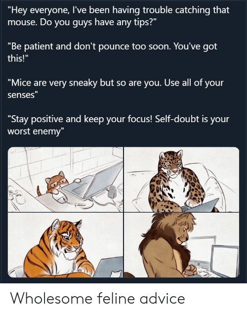 "enemy: ""Hey everyone, I've been having trouble catching that  mouse. Do you guys have any tips?""  ""Be patient and don't pounce too soon. You've got  this!""  ""Mice are very sneaky but so are you. Use all of your  senses""  ""Stay positive and keep your focus! Self-doubt is your  worst enemy""  NRRT Wholesome feline advice"