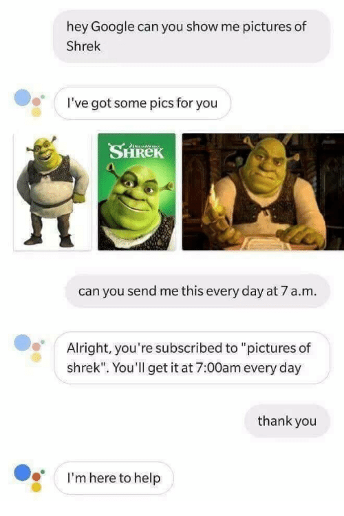 """Google, Shrek, and Thank You: hey Google can you show me pictures of  Shrek  I've got some pics for you  SHREK  can you send me this every day at 7 a.m.  Alright, you're subscribed to """"pictures of  shrek"""". You'll get it at 7:00am every day  thank you  I'm here to help"""