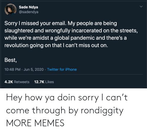 hey: Hey how ya doin sorry I can't come through by rondiggity MORE MEMES