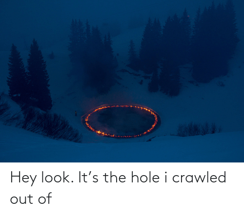 Hole, The Hole, and Look: Hey look. It's the hole i crawled out of