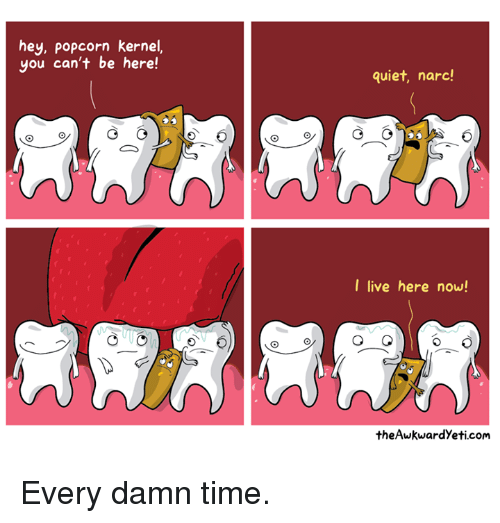 Narcing: hey, Popcorn kernel,  you can't be here  G  quiet, narc!  I live here now!  theAwkwardyeti com Every damn time.