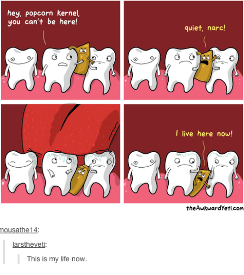 Narcing: hey, popcorn kernel,  you can't be here!  mousathe 14  arstheyeti  This is my life now.  quiet, narc!  I live here now!  the Awkwardyeti.com