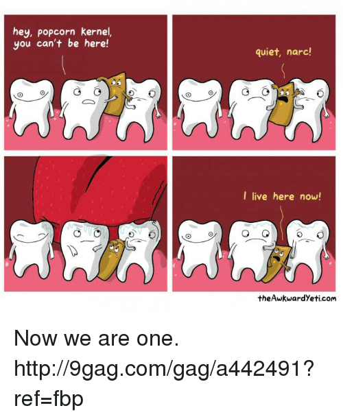Narcing: hey, Popcorn kernel,  you can't be here!  quiet, narc!  I live here now!  the Awkwardyeti.com Now we are one. http://9gag.com/gag/a442491?ref=fbp
