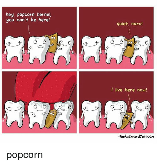 Narcing: hey, popcorn kernel,  you can't be here!  quiet, narc!  I live here now!  the Awkwardyeti com popcorn
