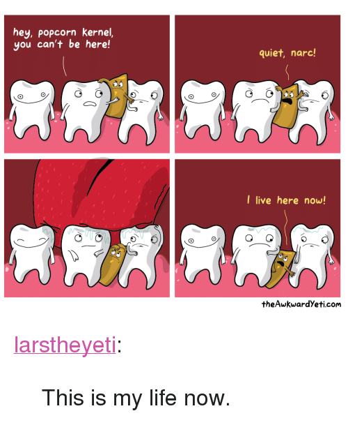 """kernel: hey, popcorn kernel,  you can't be here!  quiet, narc!  I live here now!  theAwkwardYeti.com <p><a class=""""tumblr_blog"""" href=""""http://larstheyeti.tumblr.com/post/76659943596/this-is-my-life-now"""" target=""""_blank"""">larstheyeti</a>:</p> <blockquote> <p>This is my life now.</p> </blockquote>"""