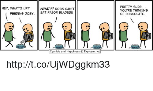 Blade, Memes, and 🤖: HEY, WHAT'S UP?  WHAT?! DOGS CAN'T  FEEDING JOEY  EAT RAZOR BLADES!!  Cyanide and Happiness Explosm.net  PRETTY SURE  YOU'RE THINKING  OF CHOCOLATE. http://t.co/UjWDggkm33