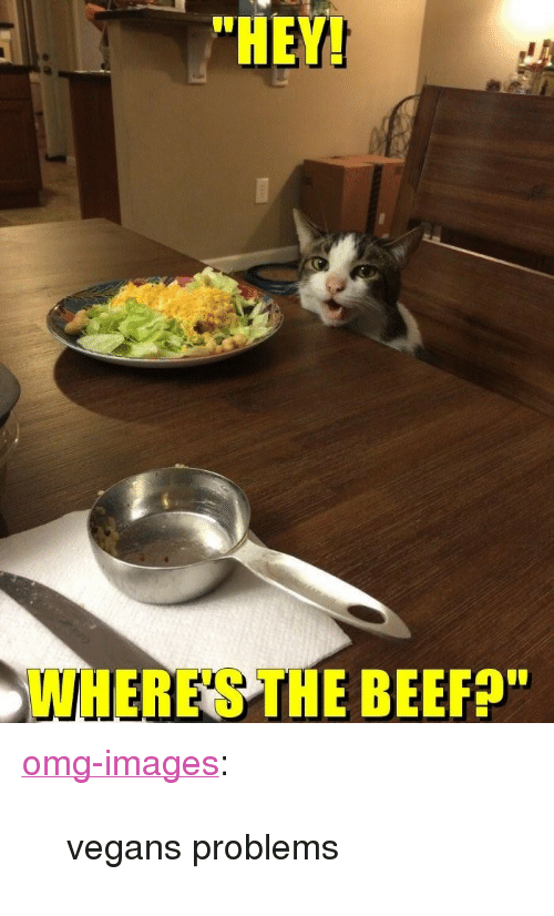 "Wheres The Beef: ""HEY!  WHERE'S THE BEEF?"" <p><a href=""http://omg-images.tumblr.com/post/151425182212/vegans-problems"" class=""tumblr_blog"">omg-images</a>:</p>  <blockquote><p>vegans problems</p></blockquote>"