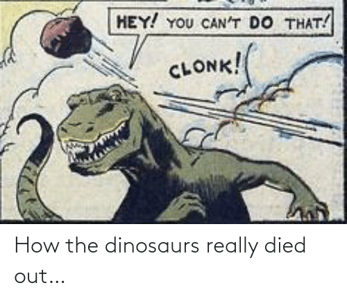 Cant Do: HEY! YOU CAN'T DO THAT!  CLONK! How the dinosaurs really died out…