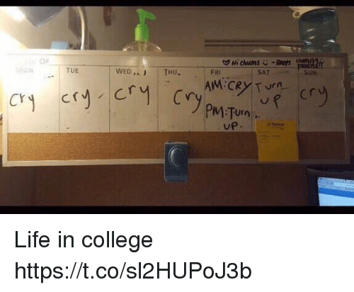 College, Life, and Turn Up: Hi chums  WED THU  TUE  FRI  AM CRY Turn  Cry Cry Cry Cry  PIM Turn  UP.  SUN Life in college https://t.co/sl2HUPoJ3b