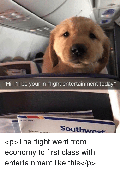 "Flight, Southwest, and Today: ""Hi, I'll be your in-flight entertainment today.""  -551-08/17  Southwest  Safety informati <p>The flight went from economy to first class with entertainment like this</p>"