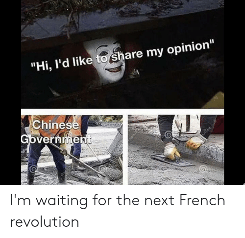 """Reddit, Chinese, and Revolution: """"Hi, l'd like to share my opinion""""  Chinese  Government  time I'm waiting for the next French revolution"""