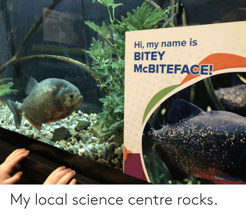 Science, Local, and Name: Hi, my name is  BITEY  MCBITEFACE! My local science centre rocks.