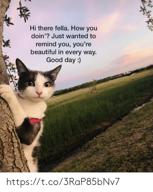 how you doin: Hi there fella. How you  doin'? Just wanted to  remind you, you're  beautiful in every way  Good day:) https://t.co/3RaP85bNv7