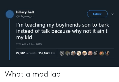 Rose, Mad, and Teaching: hillary halt  Follow  @lola_rose_xo  I'm teaching my boyfriends son to bark  instead of talk because why not it ain't  my kid  2:24 AM -9 Jun 2019  22,342 Retweets 156,162 Likes What a mad lad.