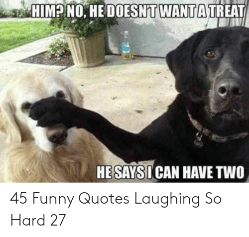 Laughing So: HIM? NO. HE DOESNT WANTA TREAT  HESAYSI CAN HAVE TWO 45 Funny Quotes Laughing So Hard 27