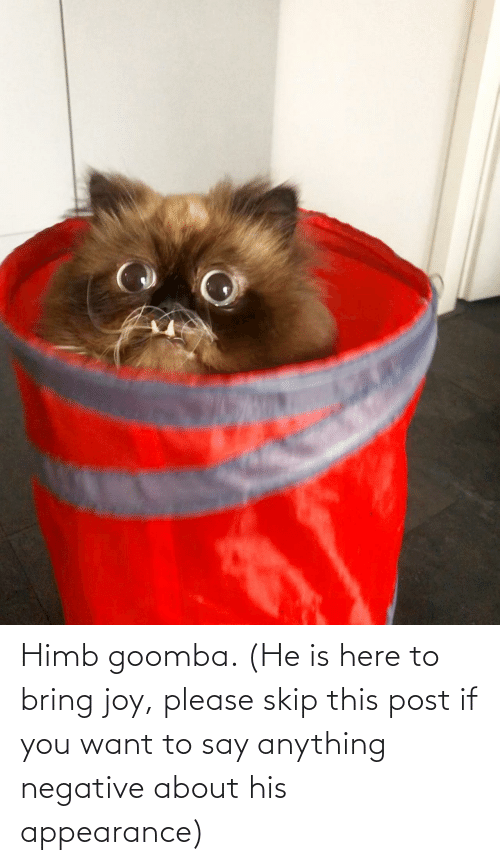 If You: Himb goomba. (He is here to bring joy, please skip this post if you want to say anything negative about his appearance)
