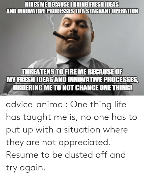 Advice, Fresh, and Life: HIRES MEBECAUSEI BRING FRESH IDEAS  AND INNOVATIVE PROCESSESTOA STAGNANT OPERATION  THREATENSTOFIREME BECAUSEOF  MY FRESH IDEAS AND INNOVATIVE PROCESSES  ORDERING METO NOT CHANGE ONE THING  imgfip.com advice-animal:  One thing life has taught me is, no one has to put up with a situation where they are not appreciated. Resume to be dusted off and try again.