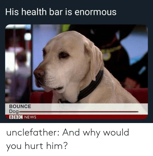 News, Target, and Tumblr: His health bar is enormous  BOUNCE  Dog  BBC NEWS unclefather:  And why would you hurt him?