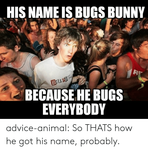 Advice, Bugs Bunny, and Tumblr: HIS NAME IS BUGS BUNNY  BILLA  BECAUSE HE BUGS  EVERYBODY advice-animal:  So THATS how he got his name, probably.