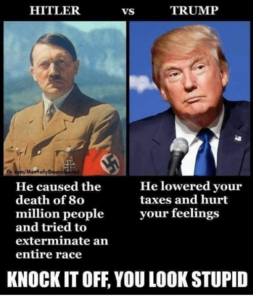 Memes, Taxes, and Death: HITLER  VS  TRUMP  fb.com/MantallyEman  He lowered your  taxes and hurt  He caused the  death of 80  million peopleyour feelings  and tried to  exterminate arn  entire race  KNOCK IT OFF, YOU LOOK STUPID