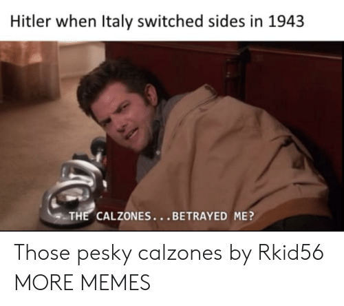 Dank, Memes, and Target: Hitler when Italy switched sides in 1943  THE CALZONES...BETRAYED ME? Those pesky calzones by Rkid56 MORE MEMES
