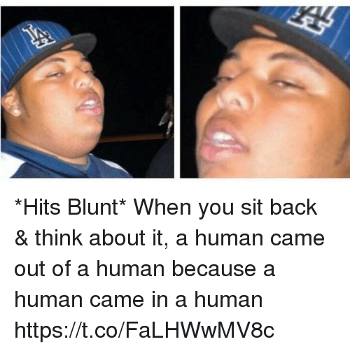 Hood, Back, and Human: *Hits Blunt*  When you sit back & think about it, a human came out of a human because a human came in a human https://t.co/FaLHWwMV8c