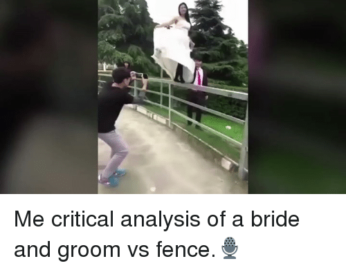 Memes, Criticism, and 🤖: HLA Me critical analysis of a bride and groom vs fence.🎙