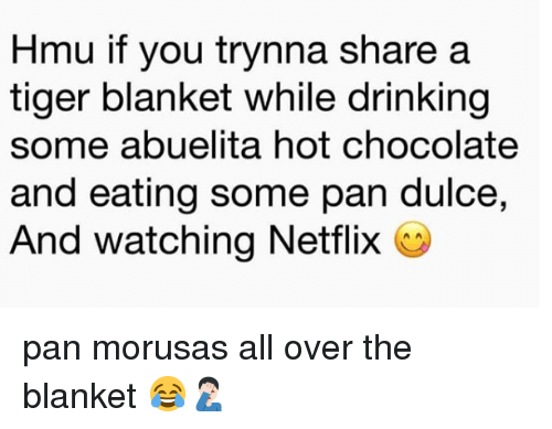 Drinking, Memes, and Netflix: Hmu if you trynna share a  tiger blanket while drinking  some abuelita hot chocolate  and eating some pan dulce,  And watching Netflix C pan morusas all over the blanket 😂🤦🏻‍♂️
