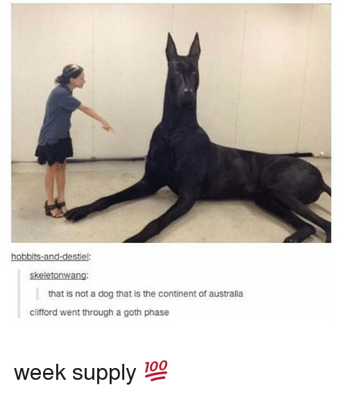 Dogs, Goths, and Dog: hobbits-and-destiel:  skeletonwang:  that is not a dog that is the continent of australia  clifford went through a goth phase week supply 💯