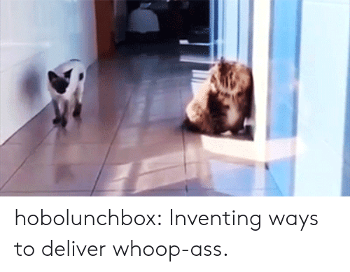 Ass, Tumblr, and Blog: hobolunchbox: Inventing ways to deliver whoop-ass.