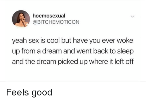 A Dream, Hoe, and Sex: hoe  @BITCHEMOTICON  mosexual  yeah sex is cool but have you ever woke  up from a dream and went back to sleep  and the dream picked up where it left off Feels good