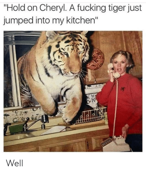 """Fucking, Tiger, and Jumped: """"Hold on Cheryl. A fucking tiger just  jumped into my kitchen"""" Well"""