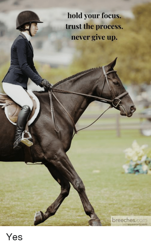 Trust The Process: hold your focus.  trust the process.  never give up.  breeches.com Yes