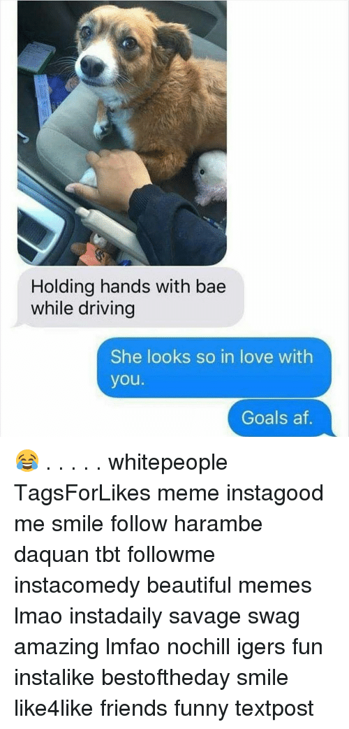 Haramber: Holding hands with bae  while driving  She looks so in love with  you.  Goals af 😂 . . . . . whitepeople TagsForLikes meme instagood me smile follow harambe daquan tbt followme instacomedy beautiful memes lmao instadaily savage swag amazing lmfao nochill igers fun instalike bestoftheday smile like4like friends funny textpost