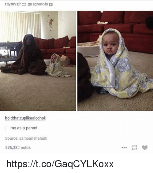 Source, Notes, and Parent: holdthatcuplikealcohol:  me as a parent  Source: samoanshehulk  225,383 notes https://t.co/GaqCYLKoxx