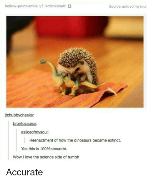 Anaconda, Love, and Tumblr: hollow-point-smilexofrnksbutt+  Source: asliceofmysoul  itchubbycheeks:  brontozaurus:  asliceofmysoul:  Reenactment of how the dinosaurs became extinct.  Yes this is 100%accurate.  Wow I love the science side of tumblr <p>Accurate</p>