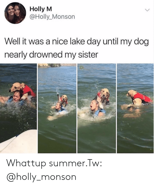 Summer, Nice, and Dog: Holly M  @Holly_Monson  Well it was a nice lake day until my dog  nearly drowned my sister Whattup summer.Tw: @holly_monson